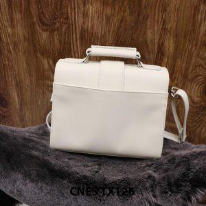 Túi xách cầm tay thời trang CNES TX126 003